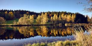 Hohenauer Hof, Bayerischer Wald